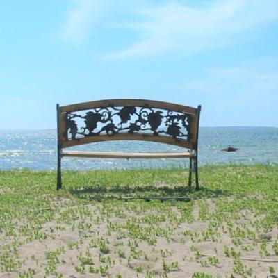 Penkki Långsandan hiekkarannalla Hangossa.