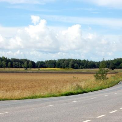 Ruissalon puistotiellä ajaessa näkee saaren monivivahteista luontoa.