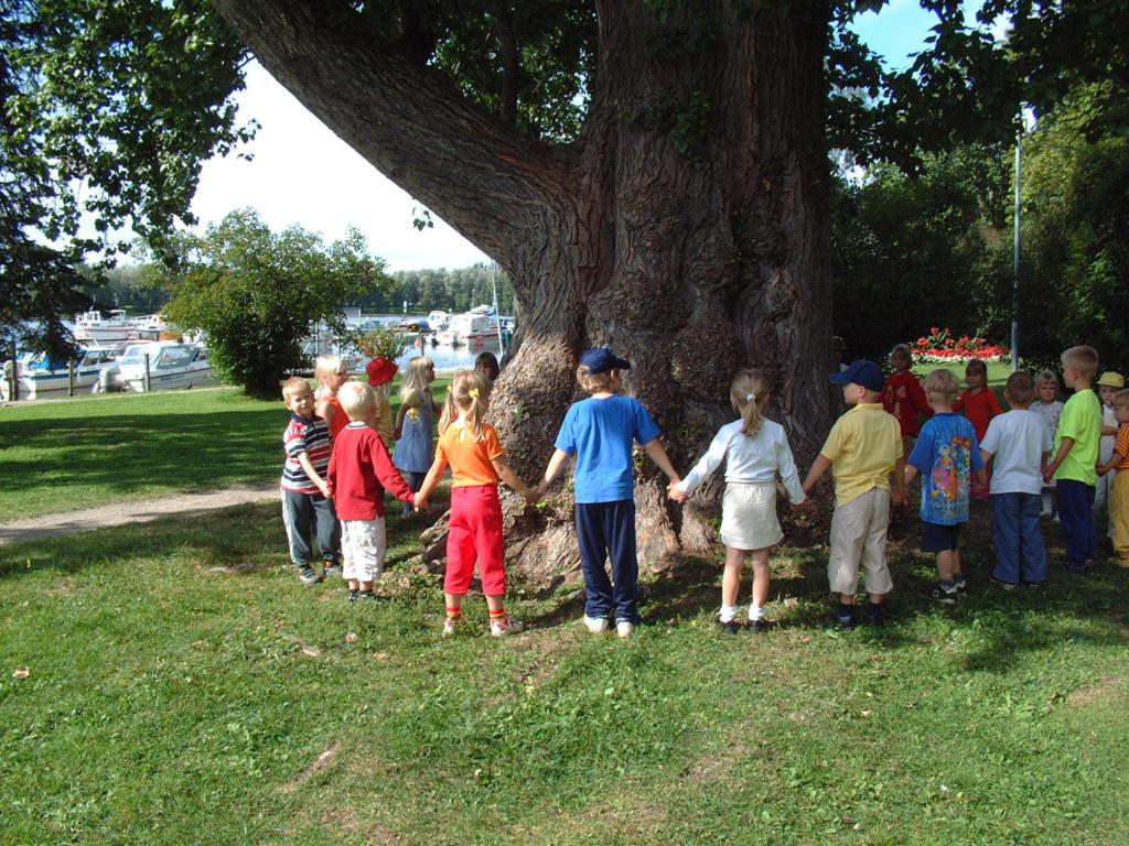 suuri puu, jonka ympärillä lapset piirissä