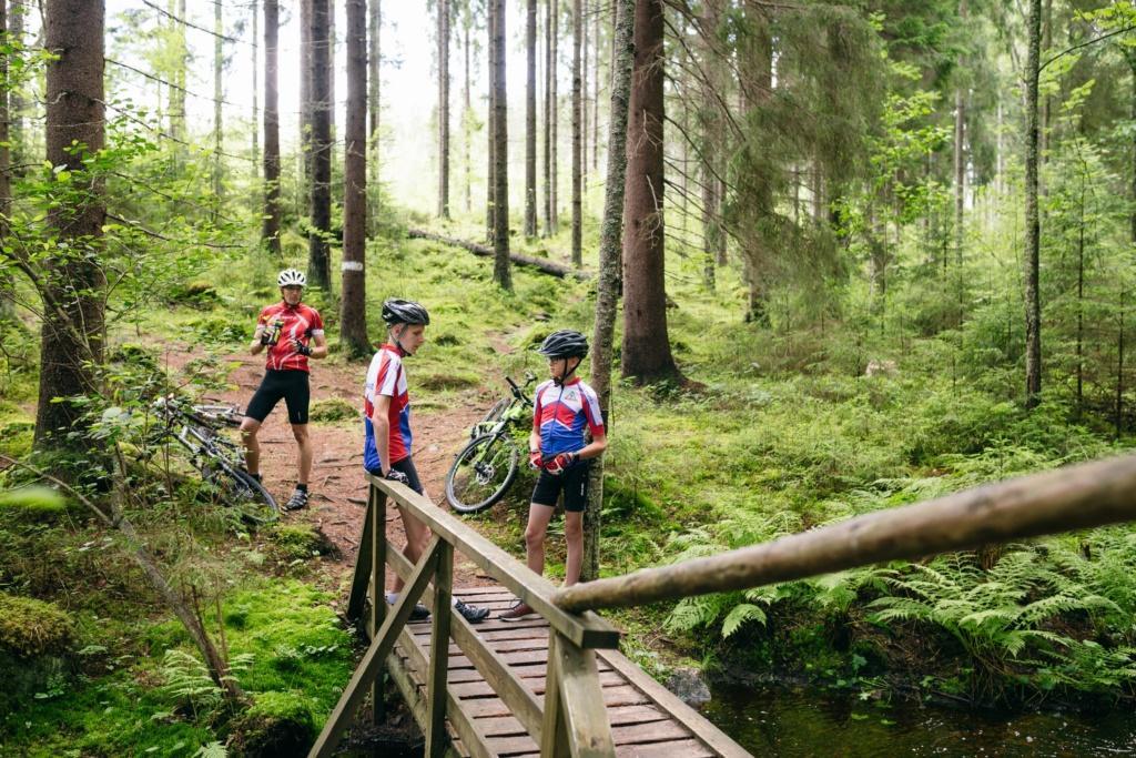 polkupyöräilijöitä metsässä, etualalla silta