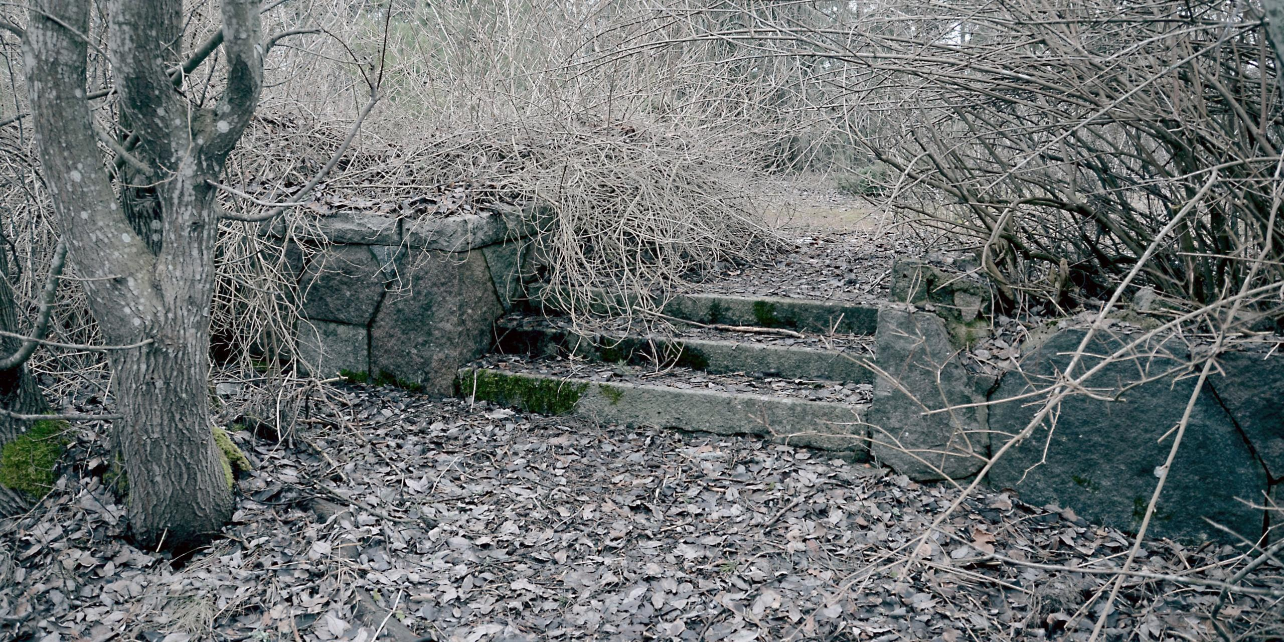 Kasvillisuuden peittoon jääneet vanha kivimuuri ja kivirappuset, luonnonkivet ovat sammaloituneet ja paikka näyttää unohdetulta. Varhain keväällä, maassa edellisen syksyn lehtiä